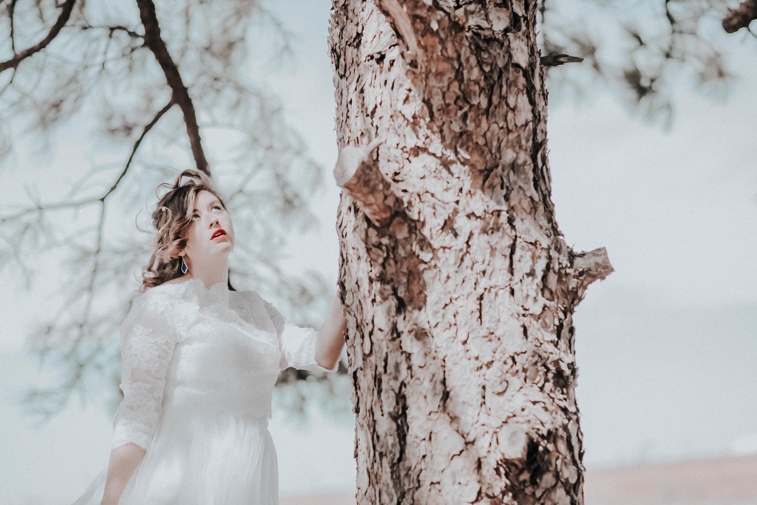 Arkansas Engagment and Wedding Photographer-7355.jpg