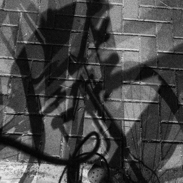 shadow smaller.jpg