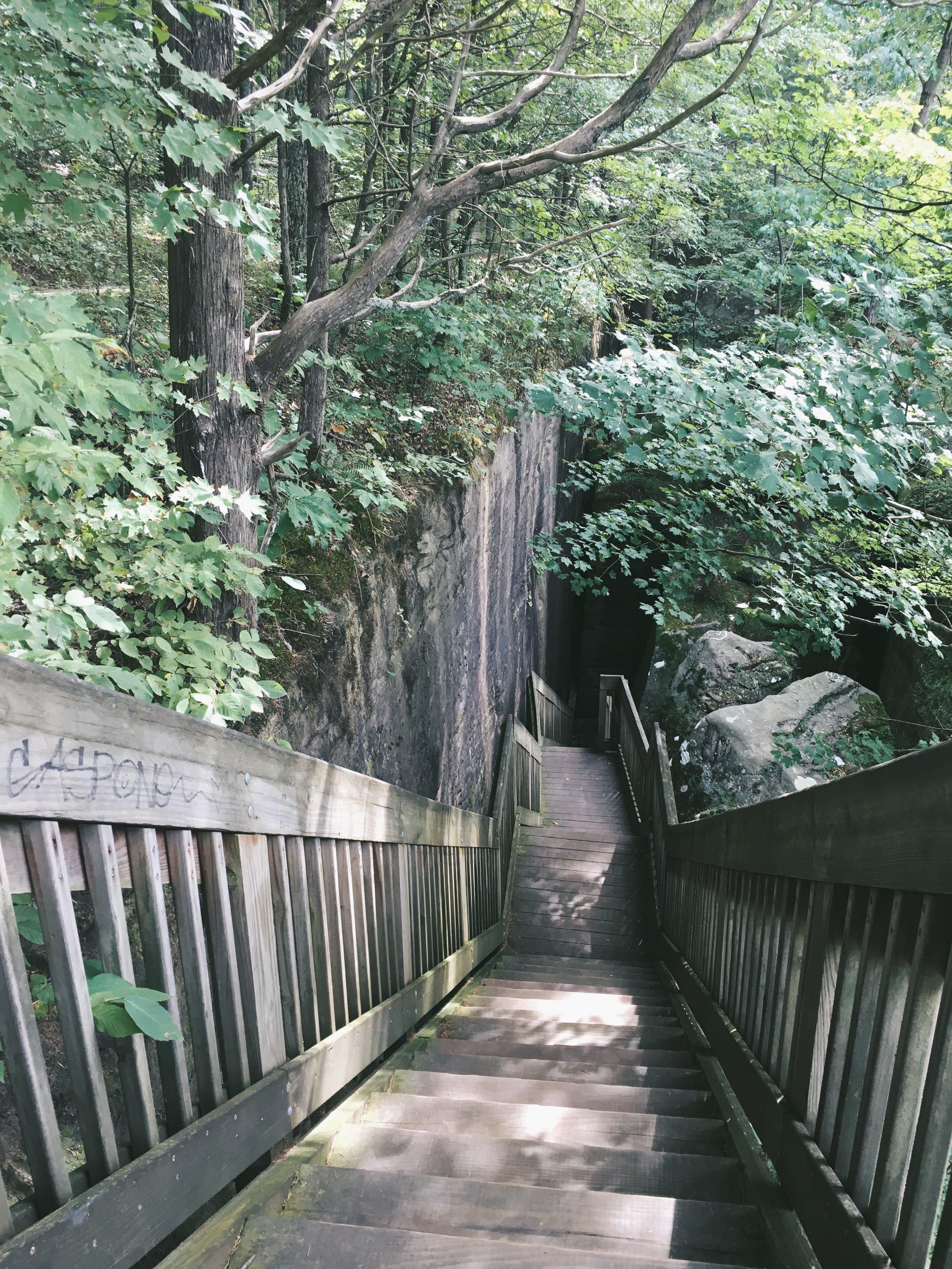 Rim Rock trail_Lo and Harv