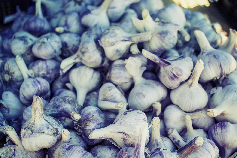garlic-2556405_1920.jpg