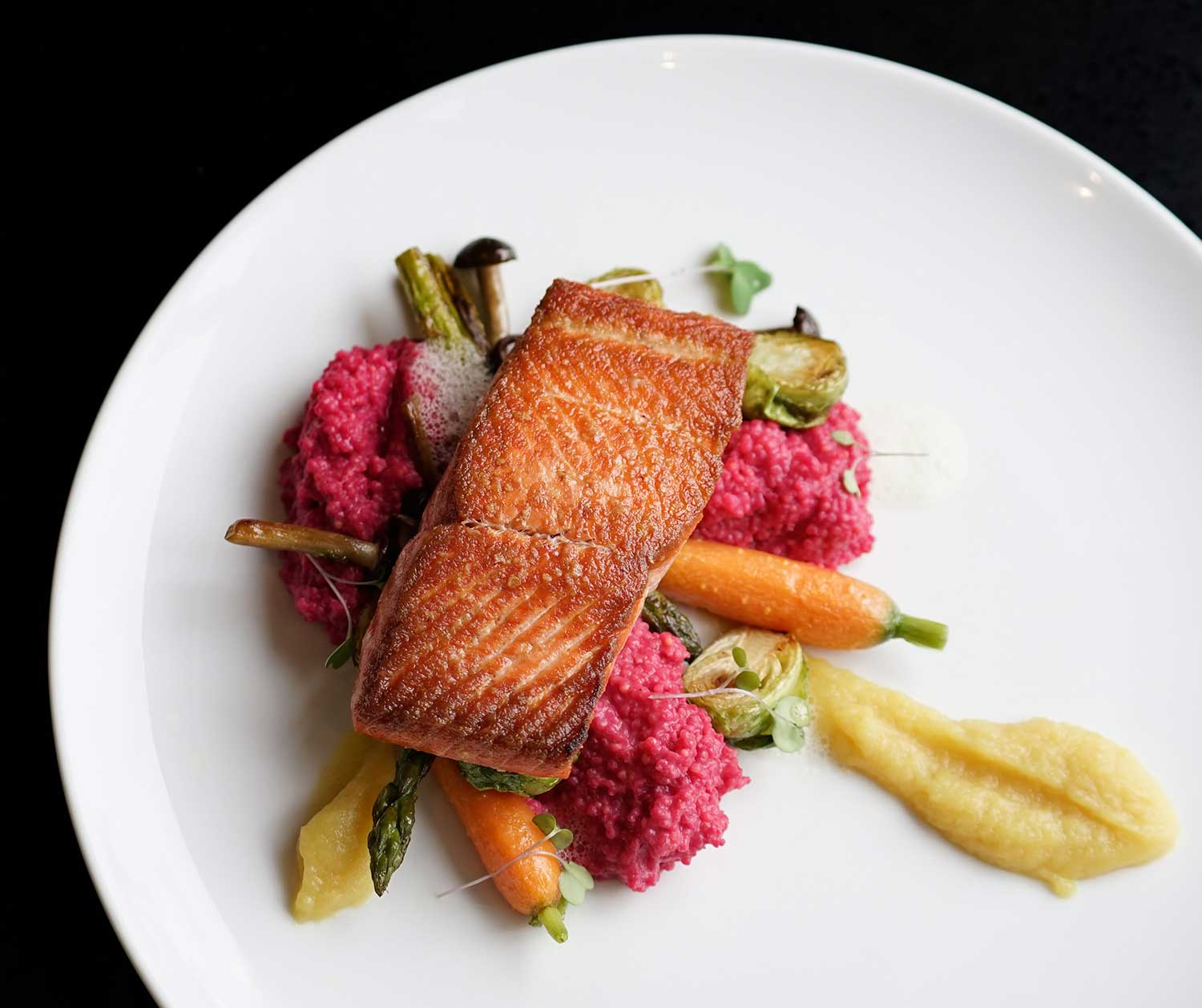 APRON-1---WILD-PACIFIC-SALMON--Millet,-beet-puree,-roasted-brussels-sprouts,-varietal-(6-of-7).jpg