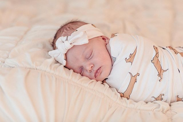 Sleeping babies are the cutest! Who else wishes they were swaddled and napping right now?!? 🙋‍♀️🙋‍♀️ #newbornphotography #carraonealphotography #cutiepatootie #snuggleme #naptime