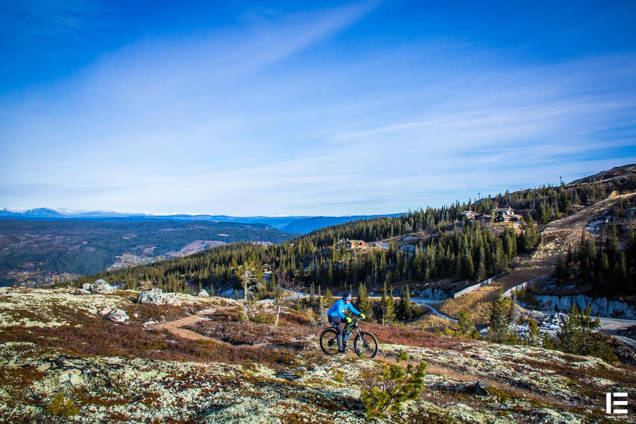 På topptur i nydelige Hallingdal:  Rita, en av deltakerne som er en fersk syklist på vei opp til toppen. Foto: Ladies Edition