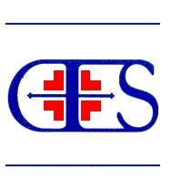 CES logo (2).jpg