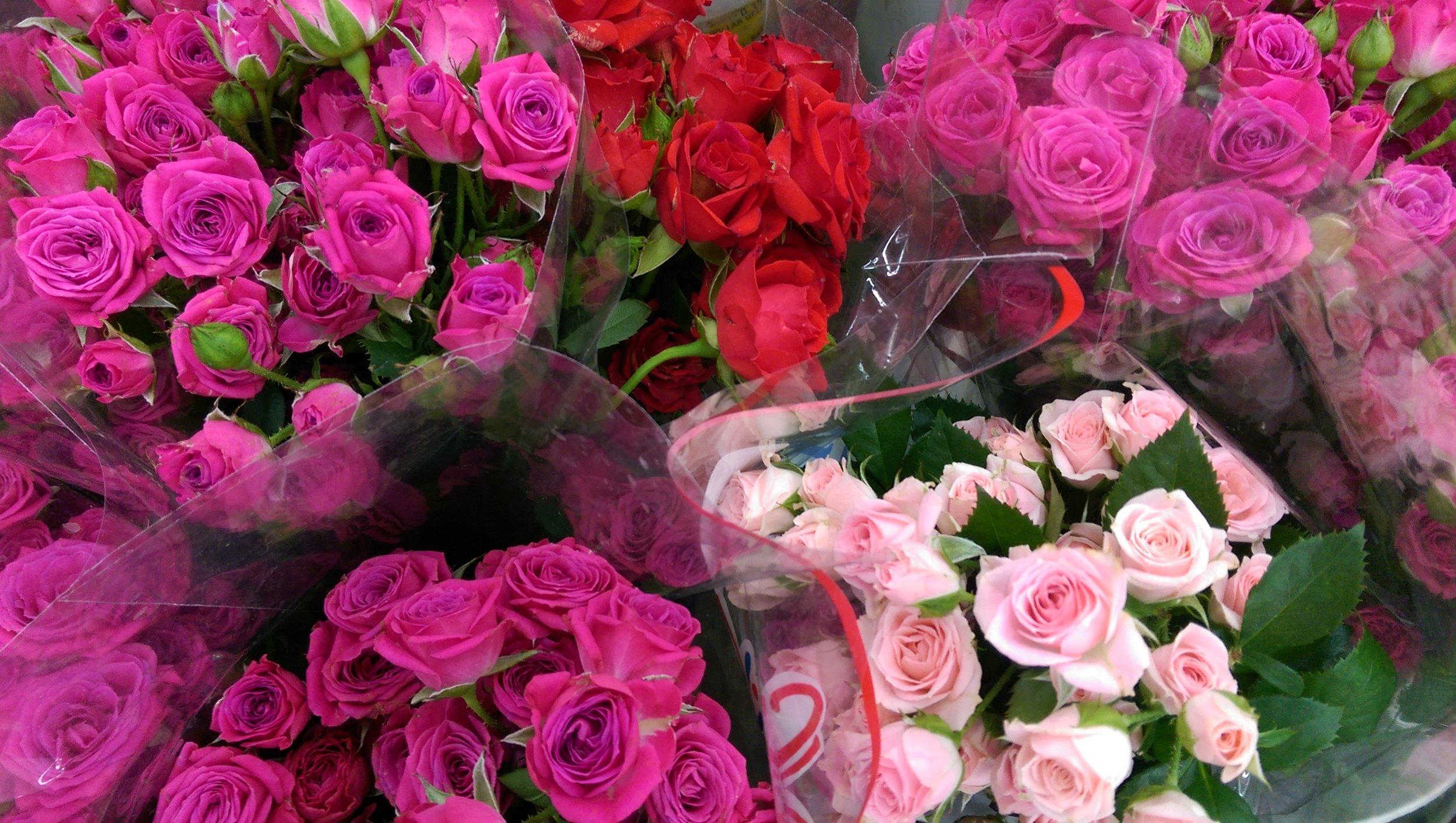 Spray Roses  Year round