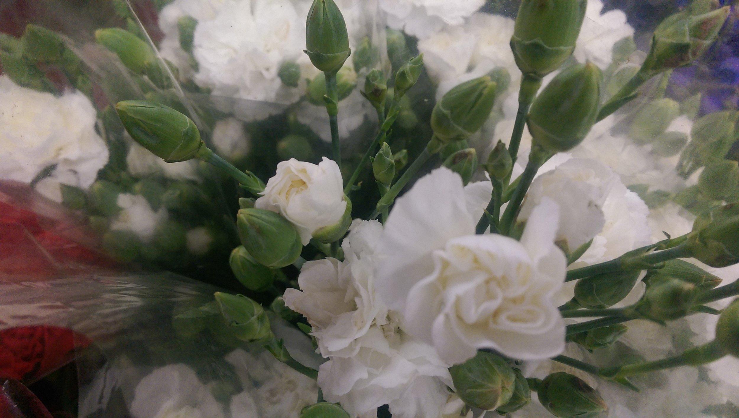 Mini Carnations  Year round