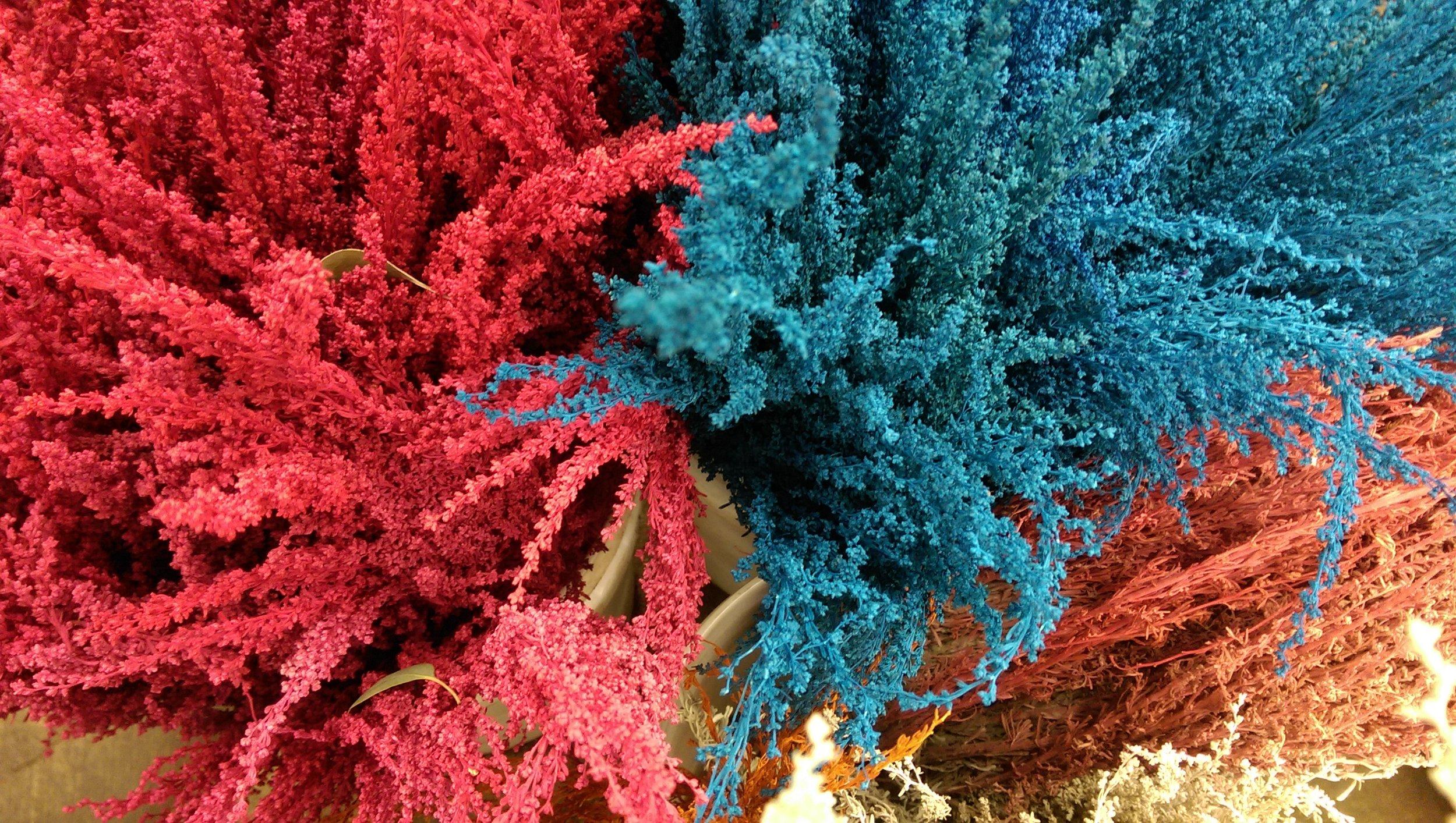 Tinted Sage  Seasonal