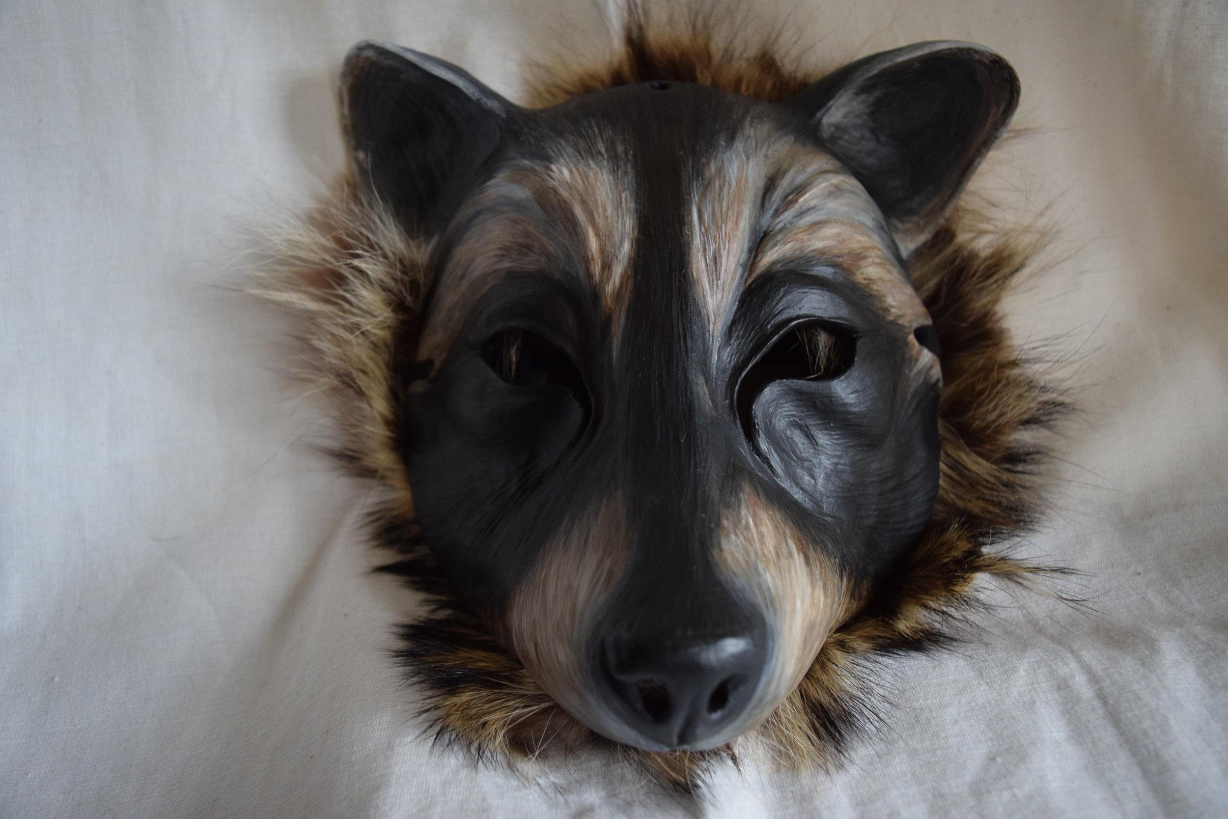 Raccoon, 2015. Clay, roadkill raccoon hide, acrylic  Sold
