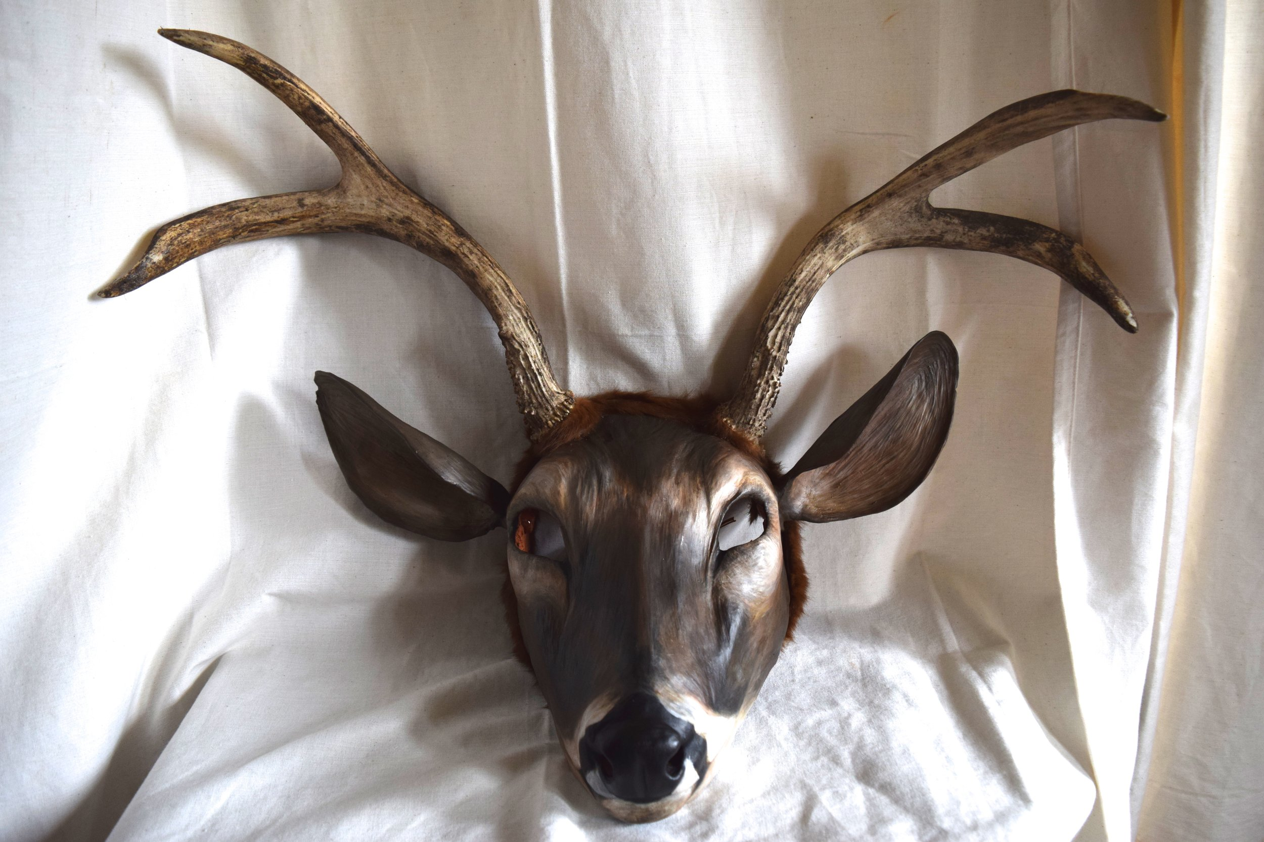 Buck, 2015. Clay, deer antler, hide, acrylic