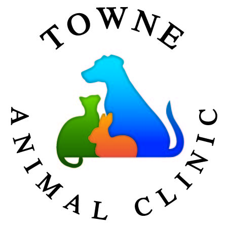 Towne Animal Clinic