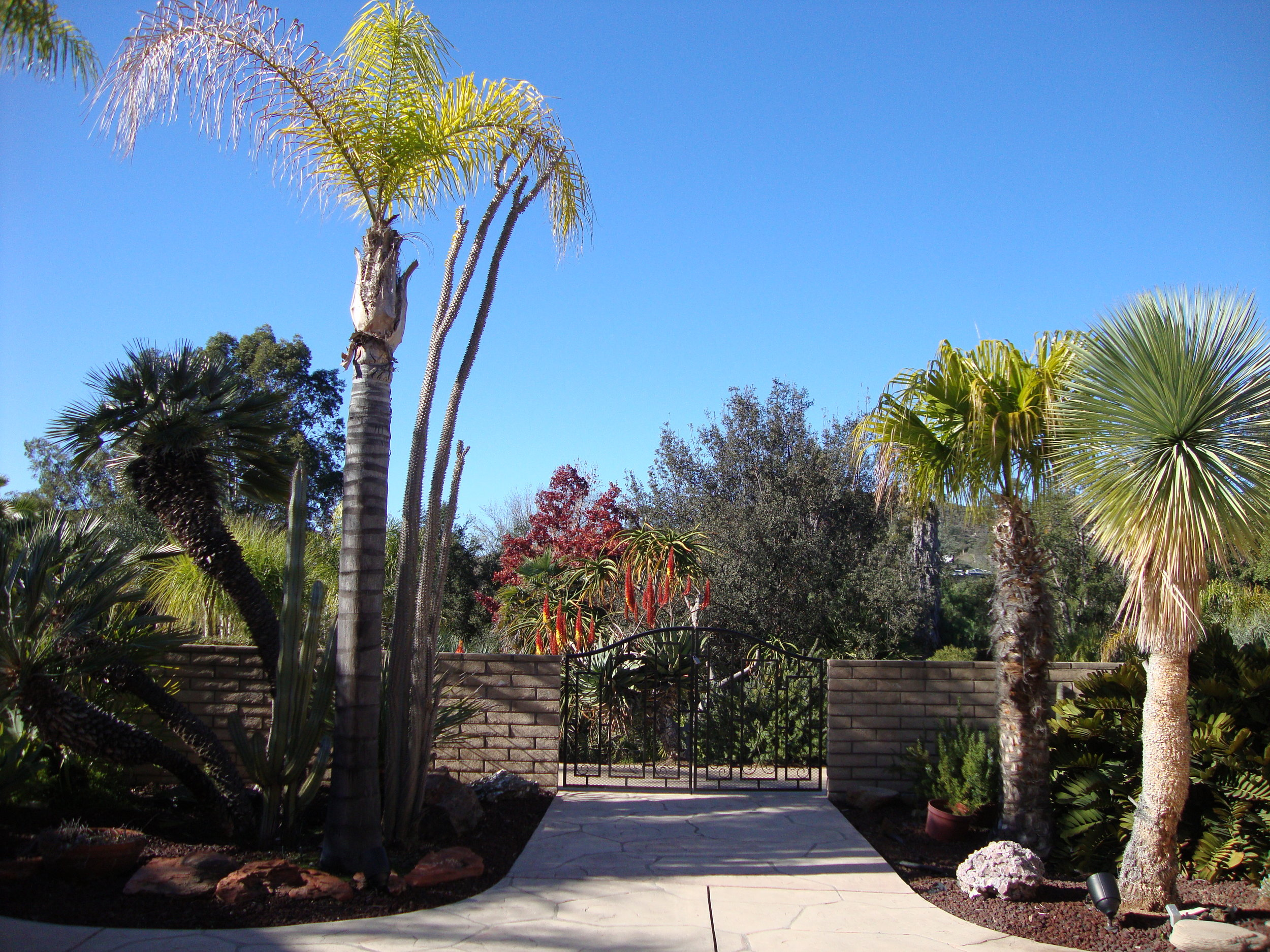 Desert Garden Gate.JPG