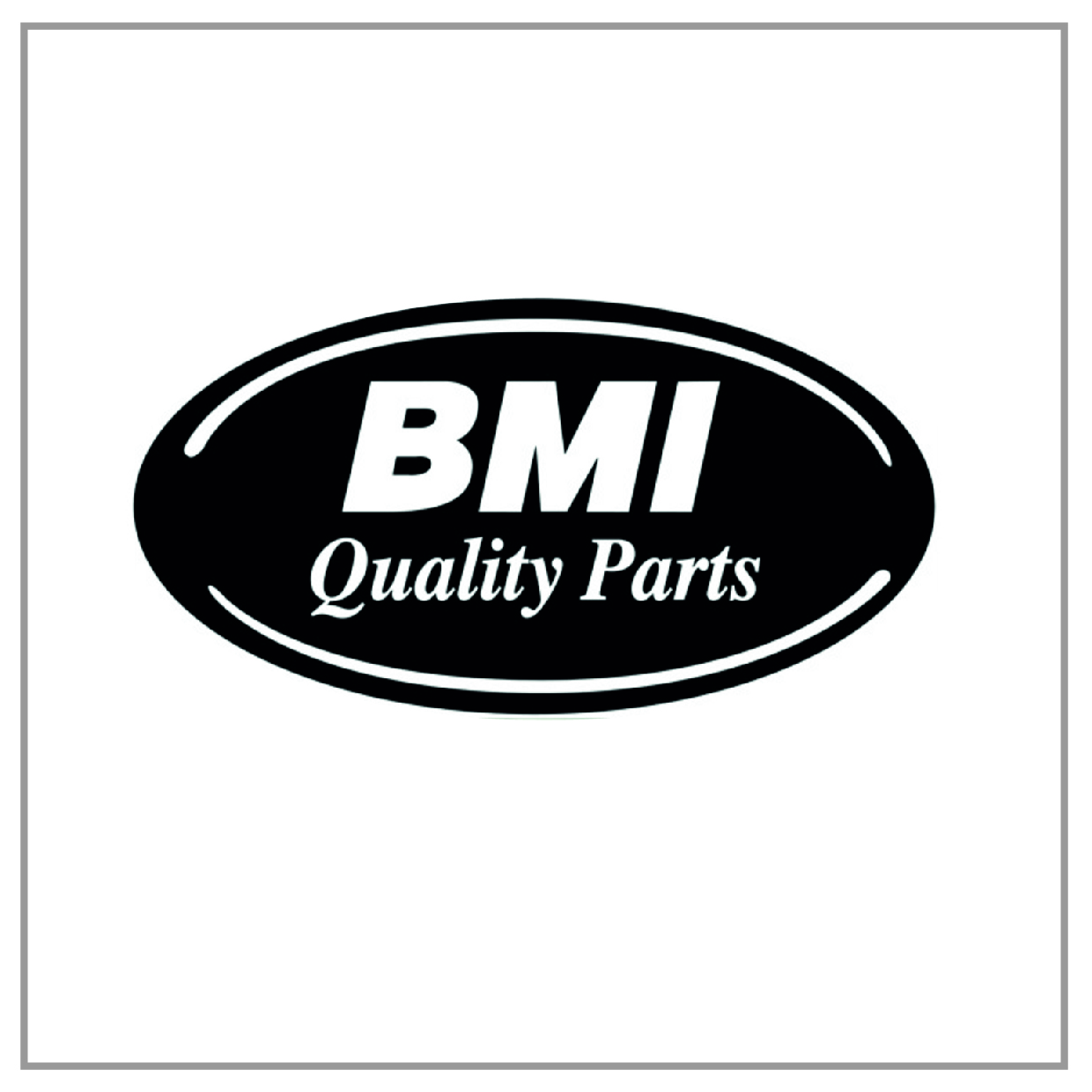 bmi-international