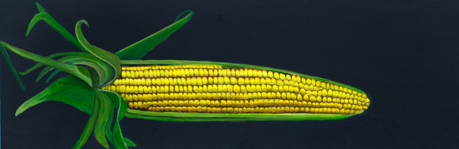 "Corn, oil on canvas, 12""x20"""