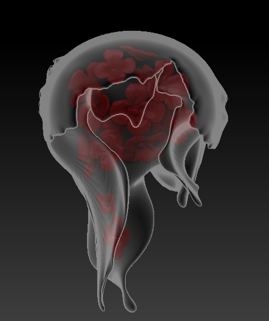 Original 3D Modeling X Ray View