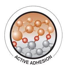 Active Adhesion.JPG
