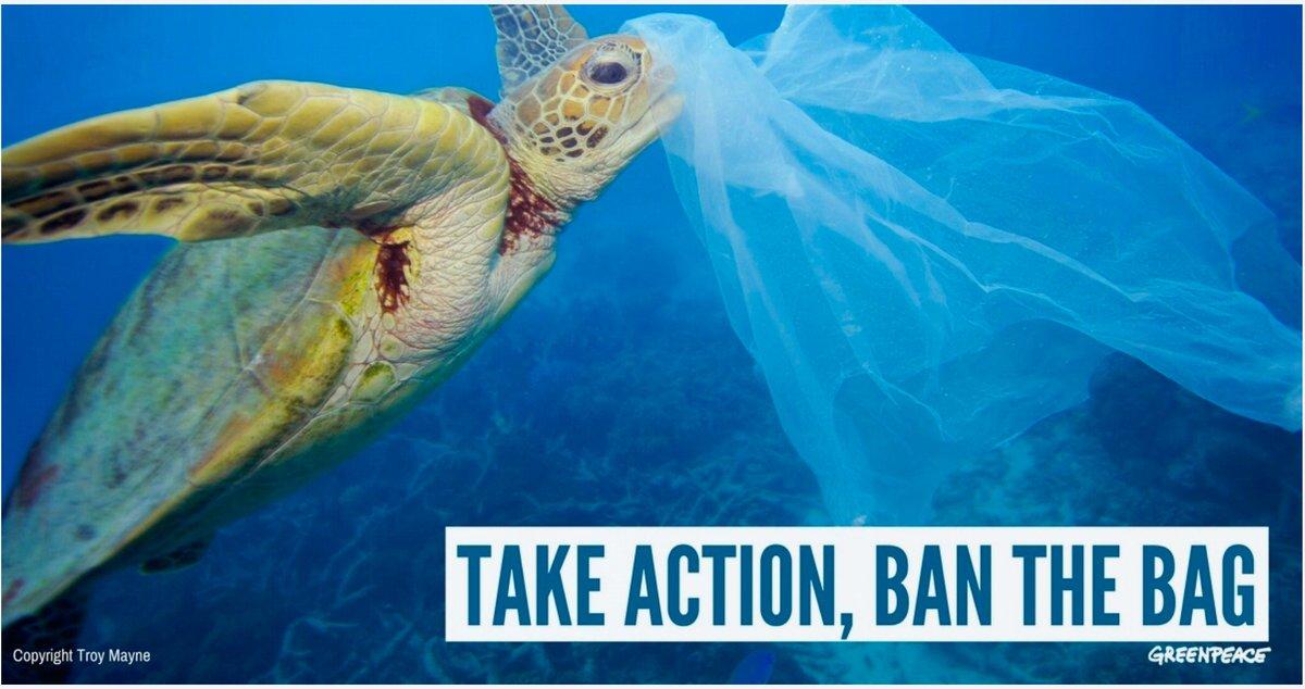 [source: Troy Mayne/Greenpeace]