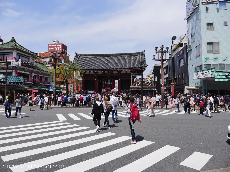asakusa-crossing.jpg
