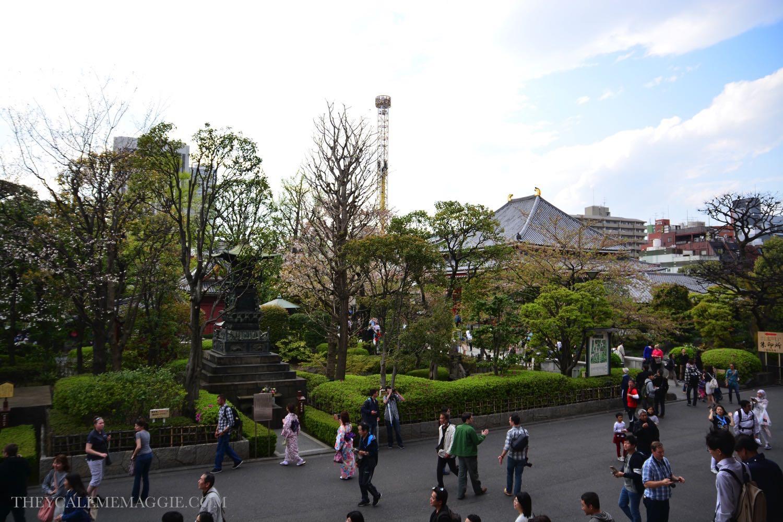 sensoji-gardens.jpg