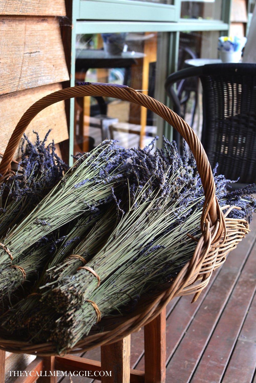 lavender-in-basket.jpg
