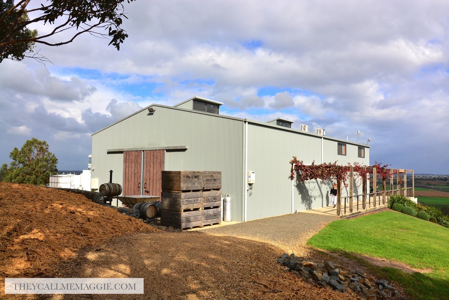 lightfoot-and-sons-winery.jpg