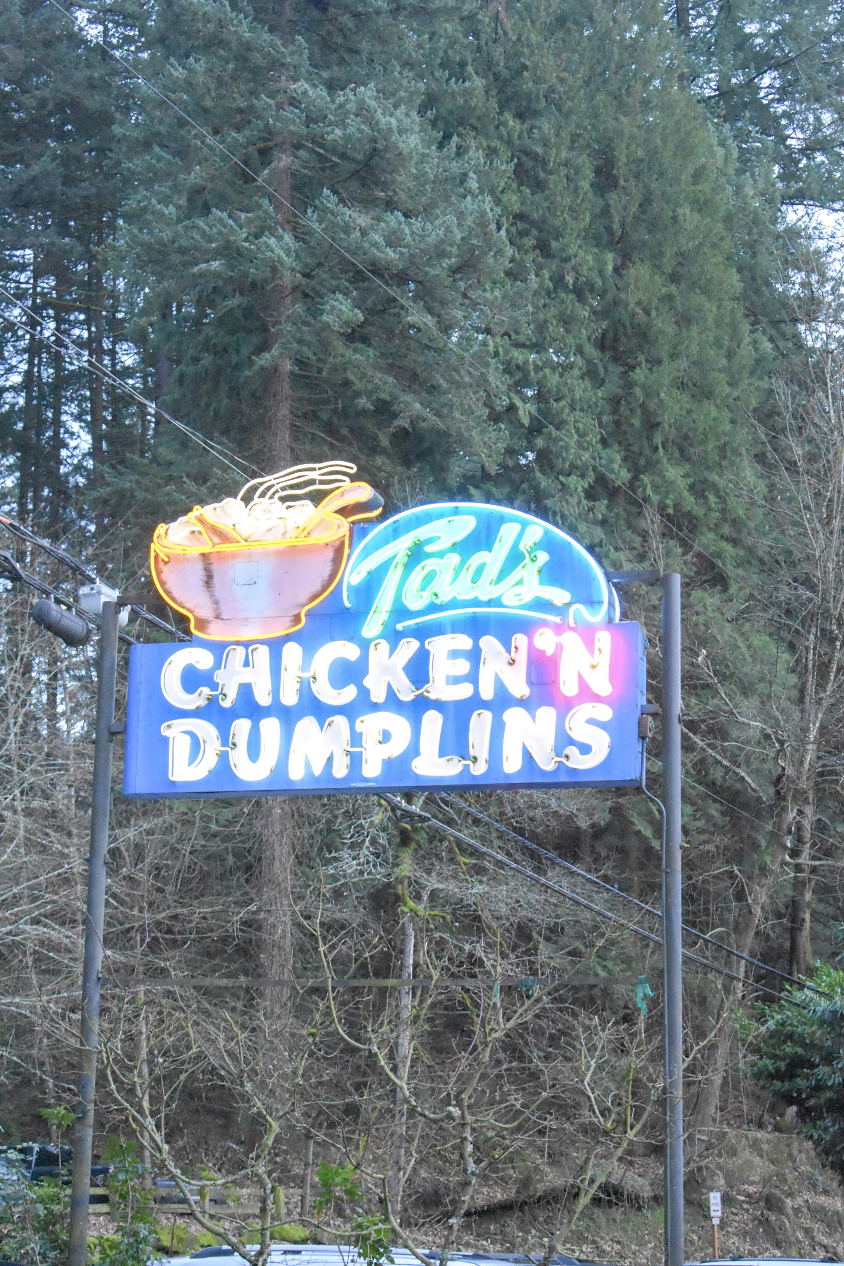 Tads-Chicken-and-Dumplins