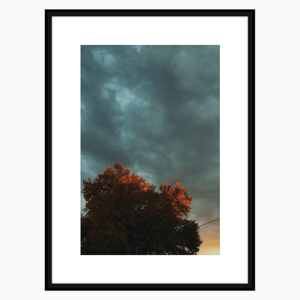 West Texas Skies Print