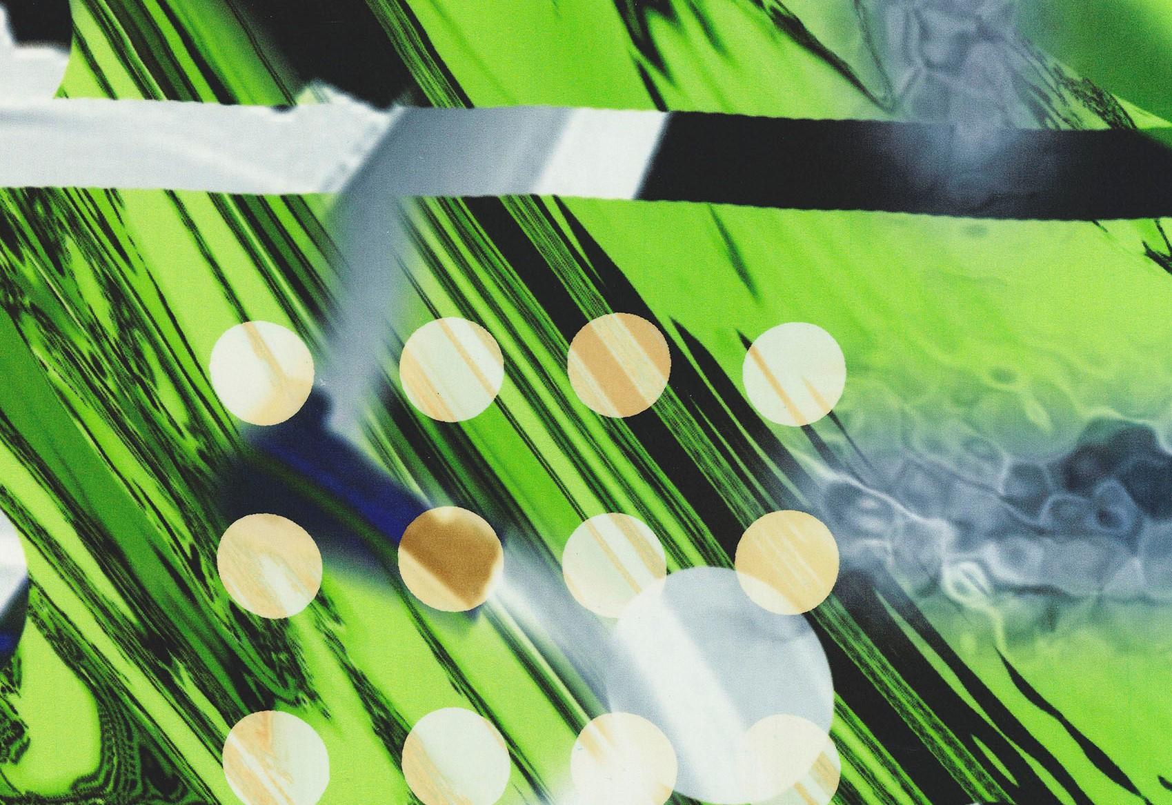 Emilie Carlsen,  Digital Realism - Green  (detail), 2015. Digital and analog printing on silk satin in steel frame.