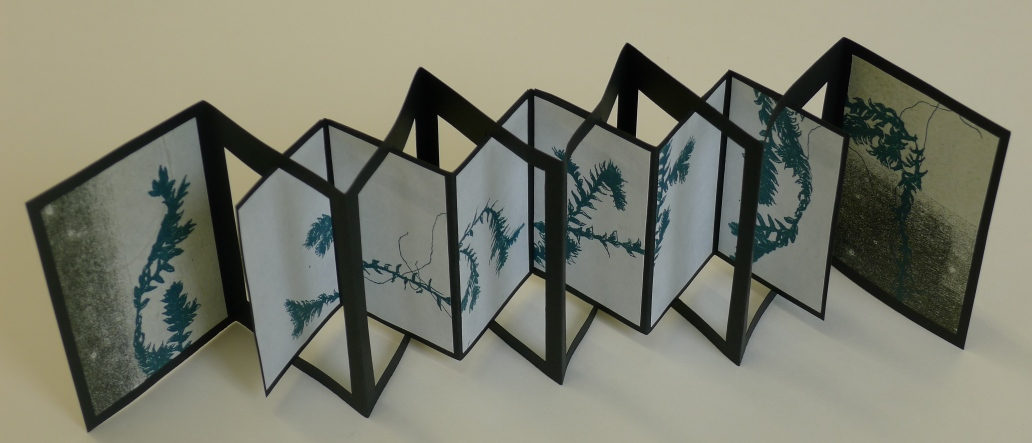 framed concertina 2