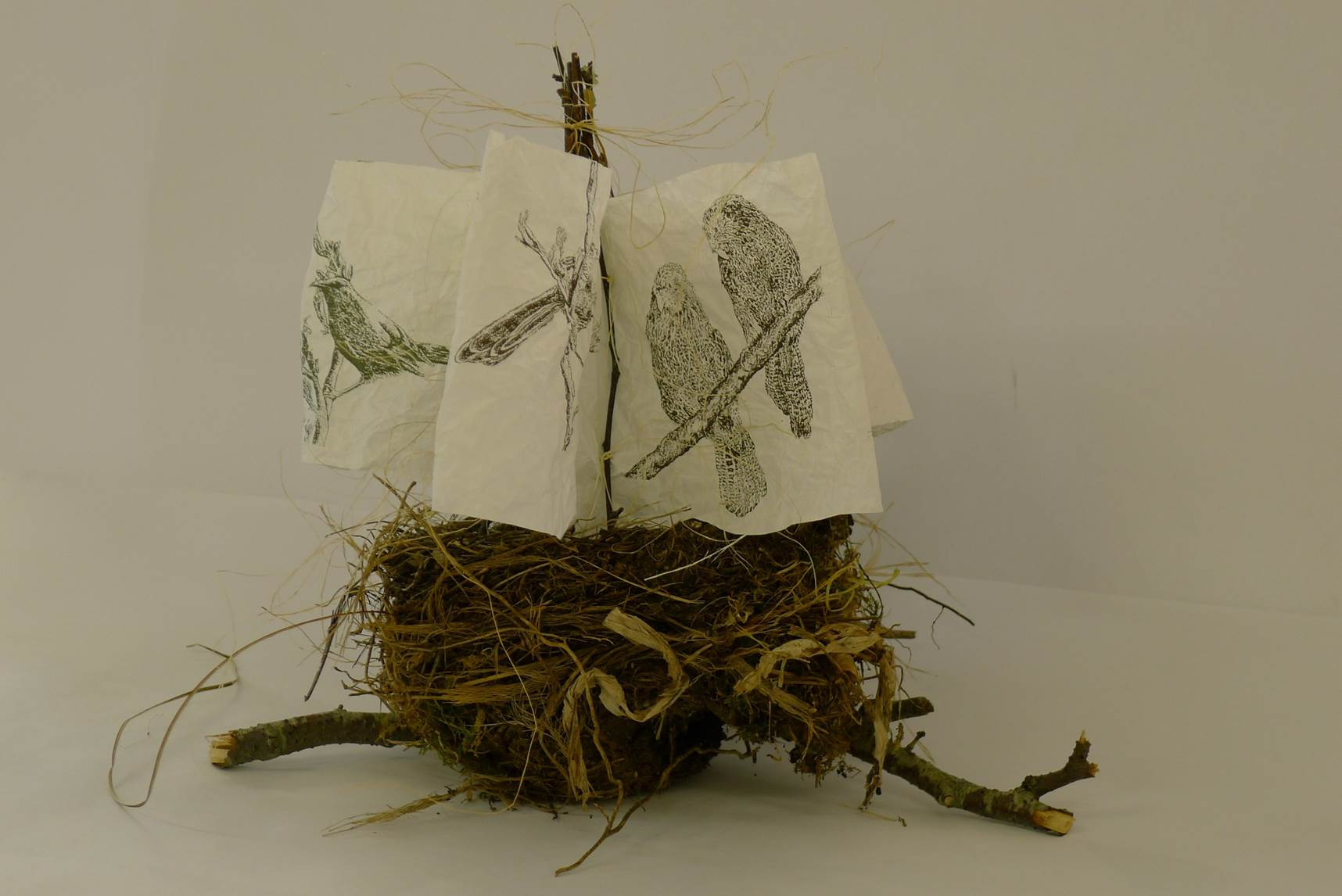 "Nested book of bird prints  ""adrift"""