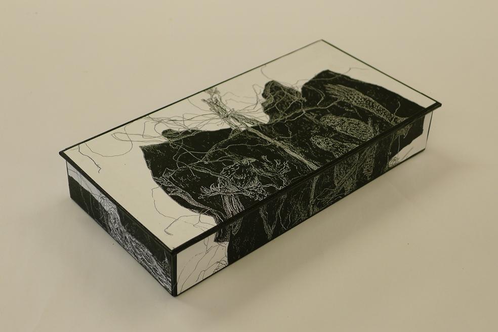 destiny-box-hinged-diane-harries-screenprint