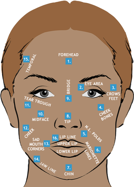 Skin Treatments Facial diagram