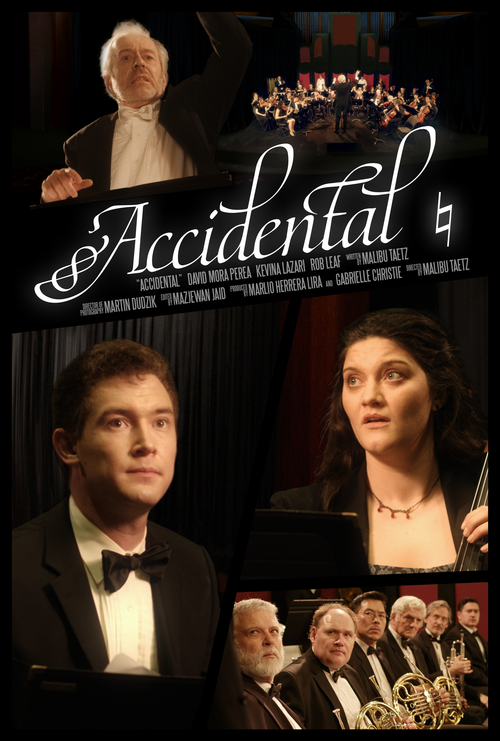 accidental_poster_final_large.png