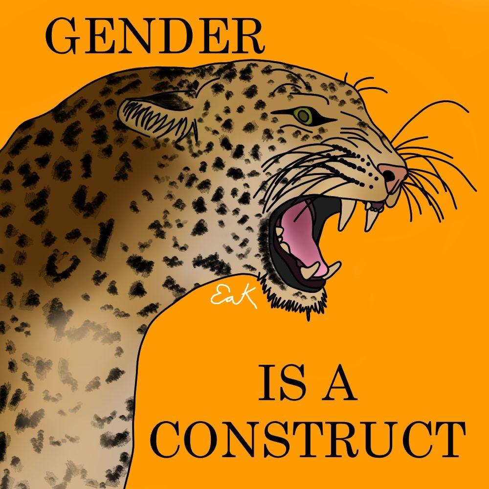 4gender leopard.jpg