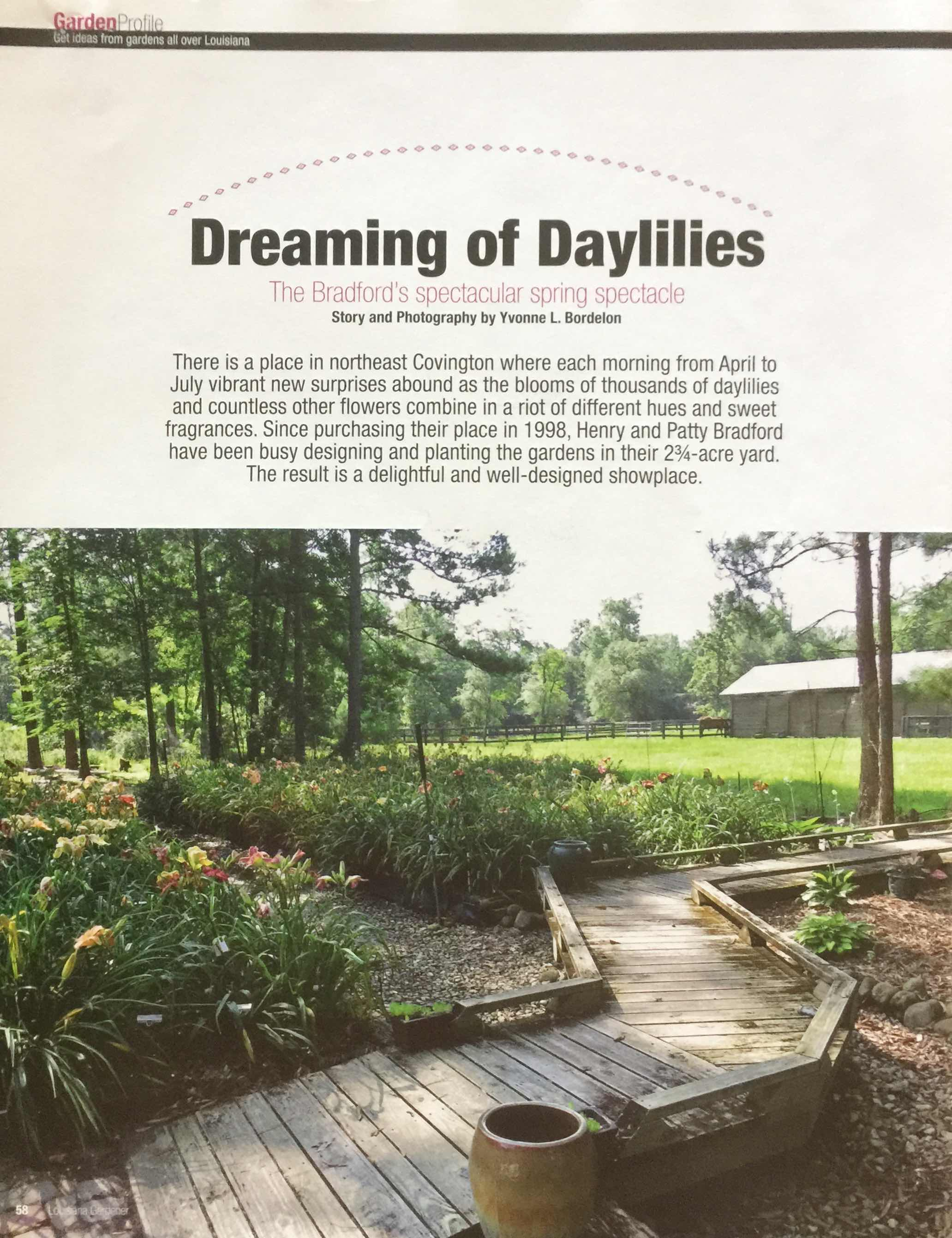 Dreaming of Daylilies_Page_1.jpg