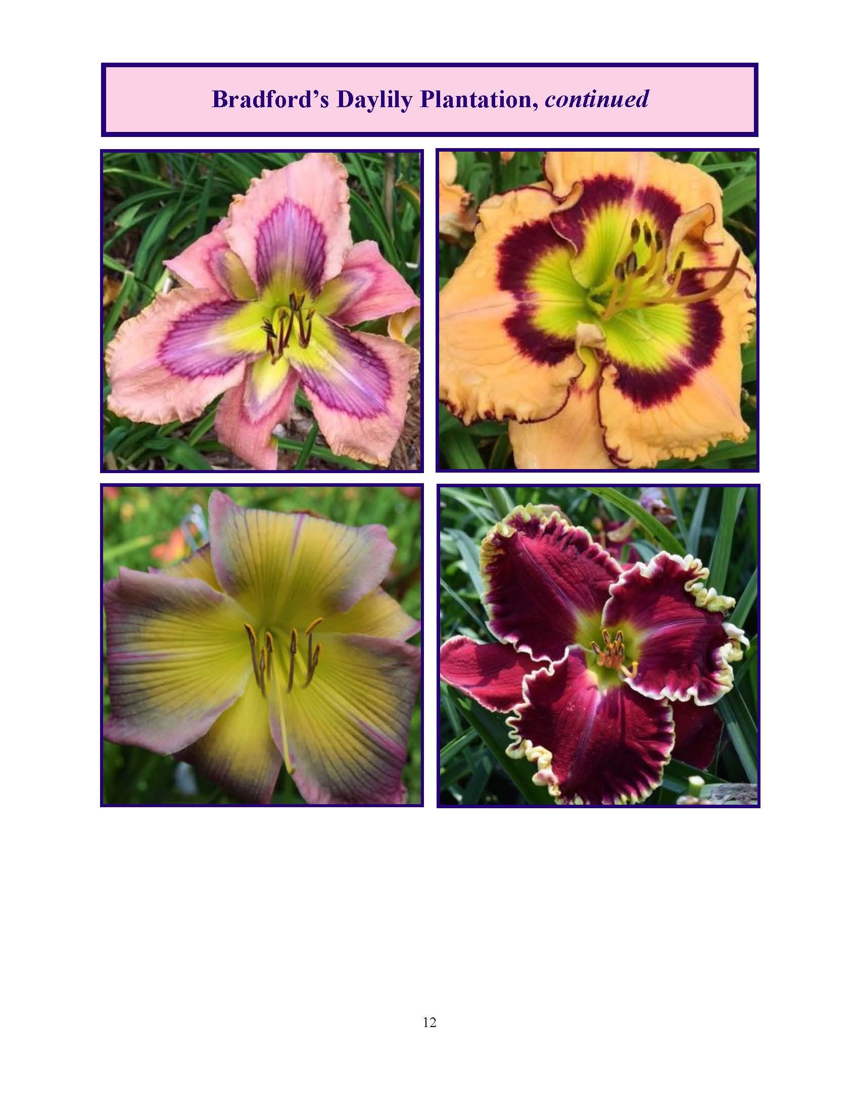 June 2017 Gardengoer_Page_12.jpg