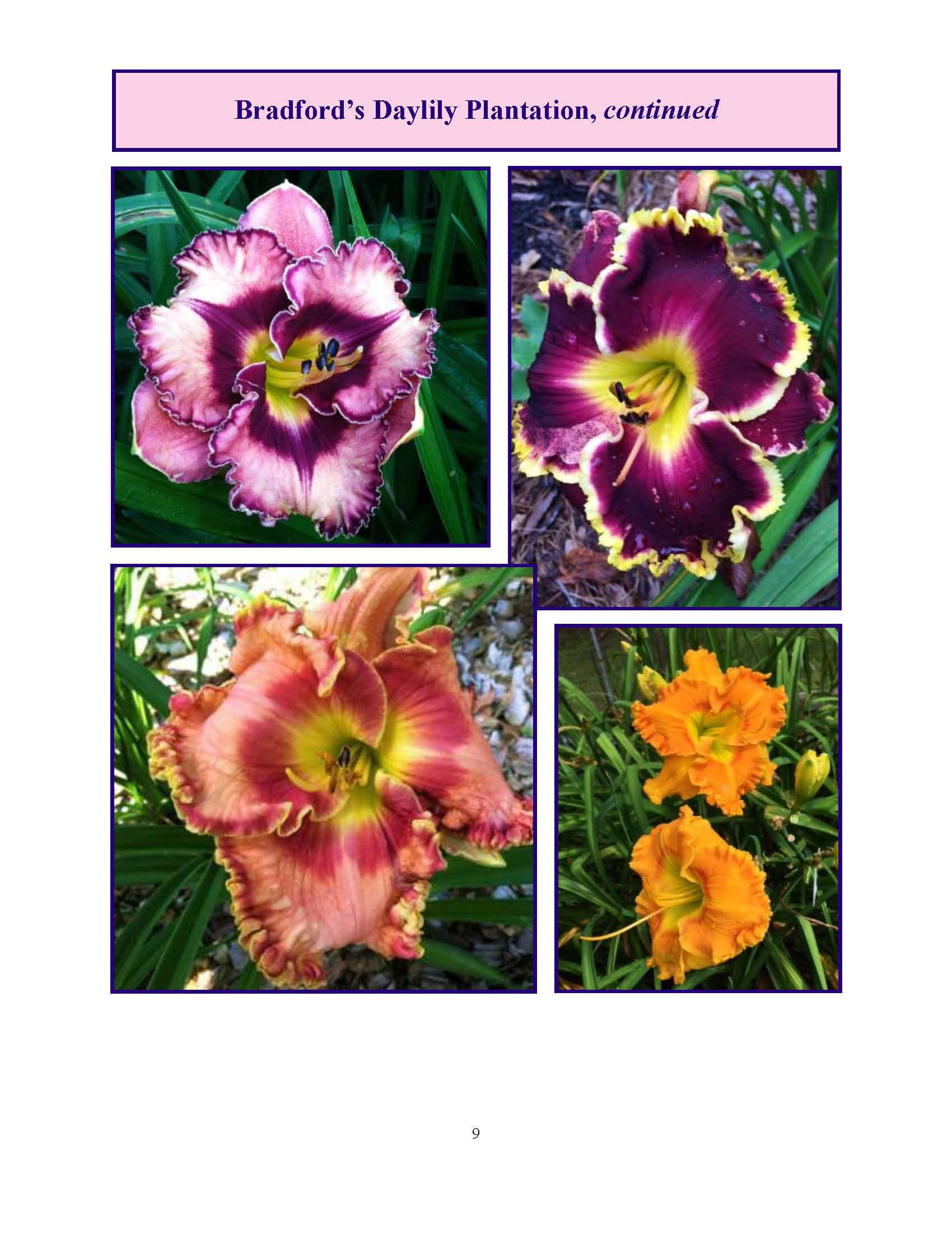 June 2017 Gardengoer_Page_09.jpg
