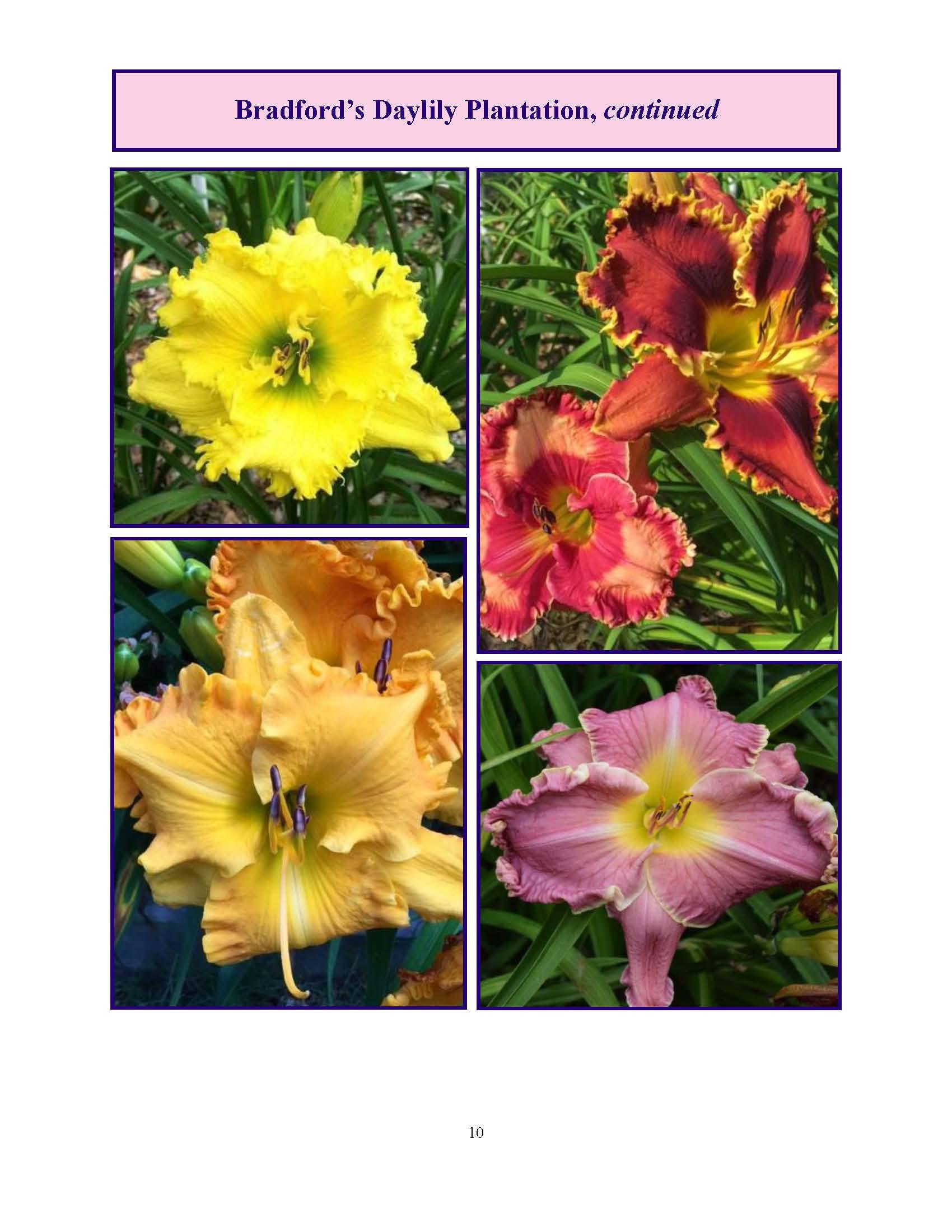 June 2017 Gardengoer_Page_10.jpg