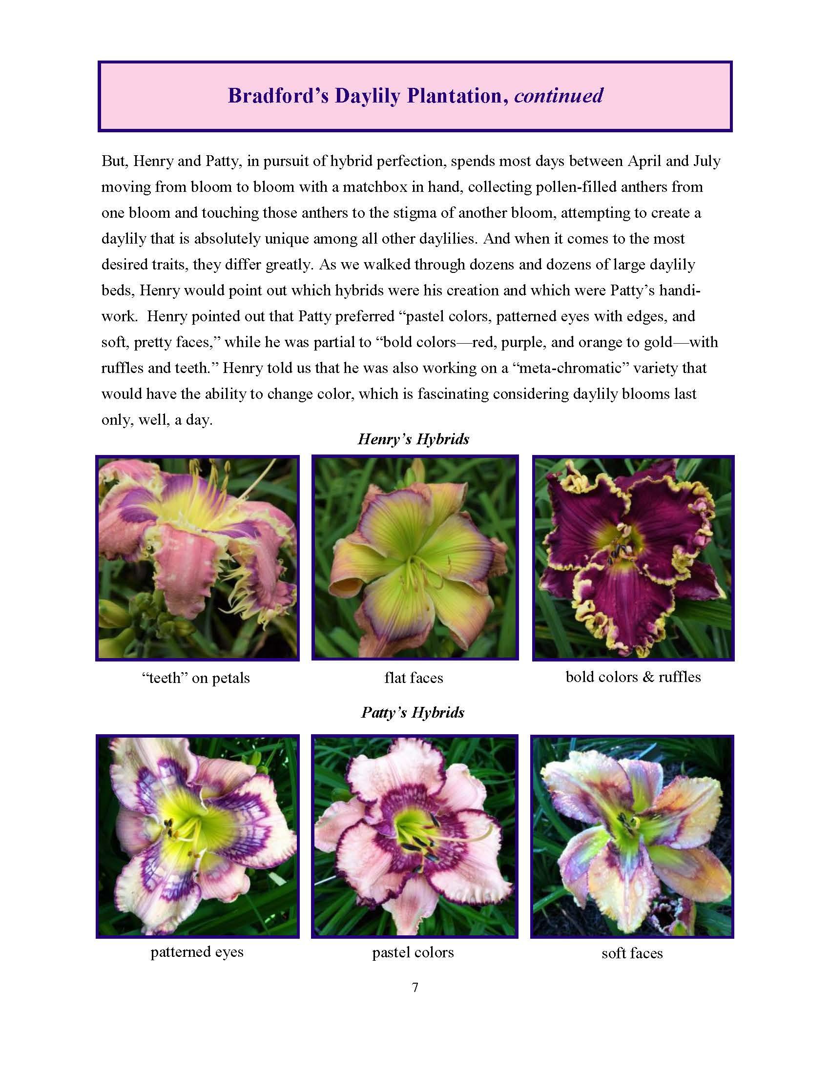 June 2017 Gardengoer_Page_07.jpg