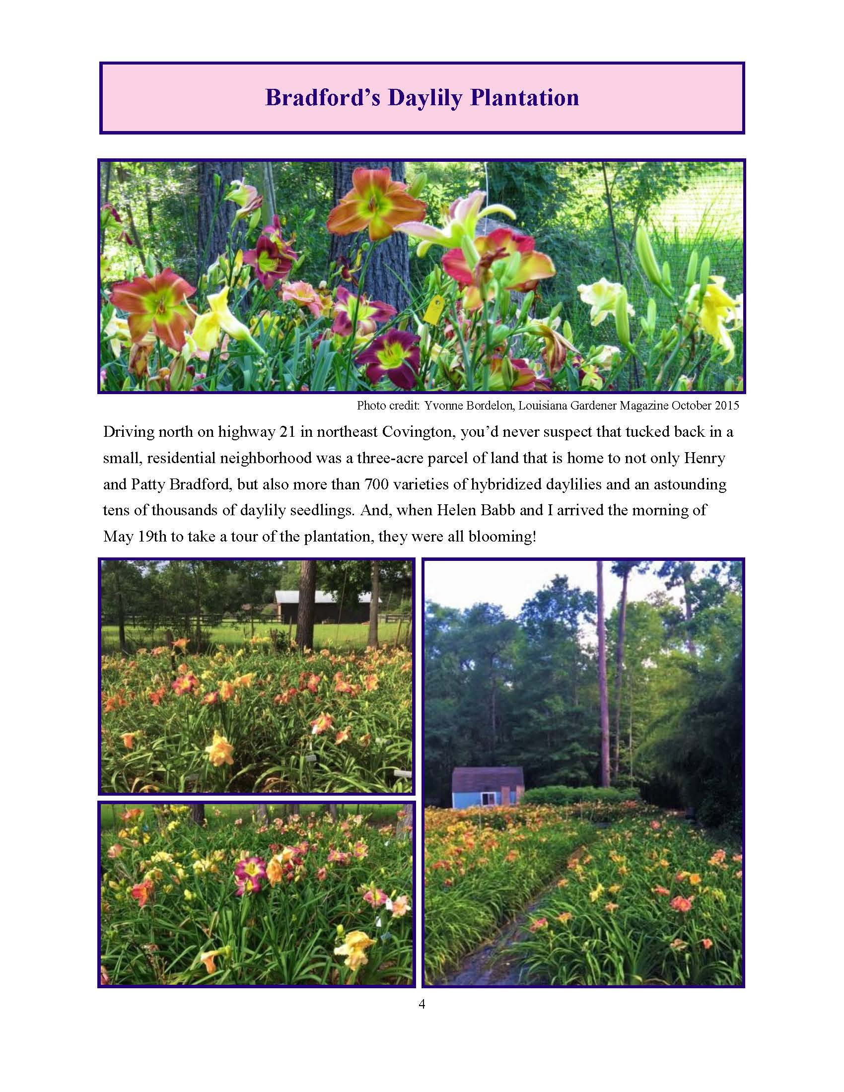June 2017 Gardengoer_Page_04.jpg