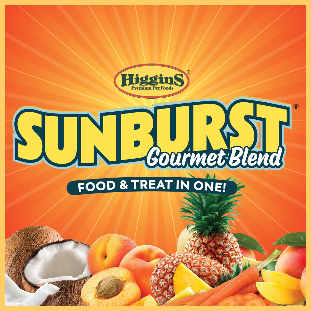 SunburstEntryLogo.jpg