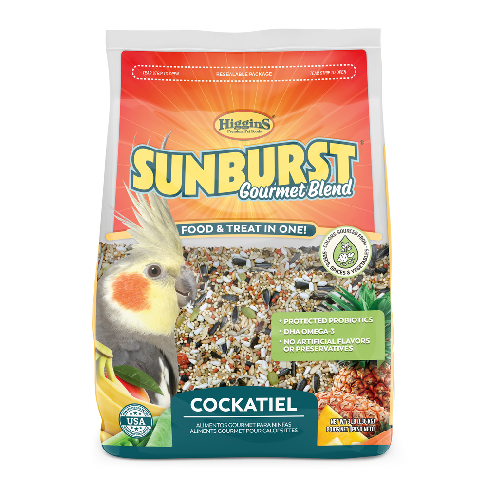 SunburstCockatielFull.jpg