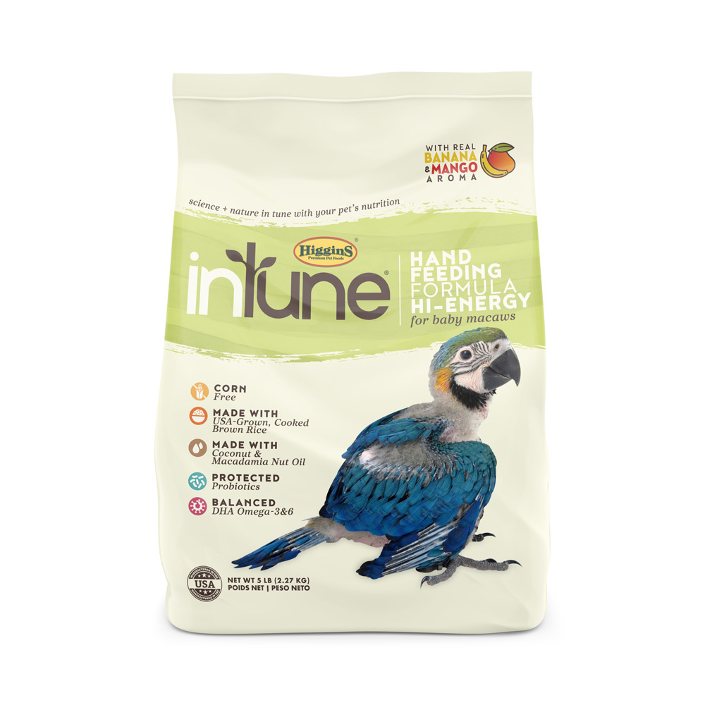 inTune Hand Feeding Hi-Energy