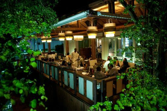 NOHA RESTAURANT & LOUNGED  Plaza Paseo San Juan, Santo Domingo, Republica Dominicana. Telefono: +1 809 455-1060 www.noahrestaurant.com