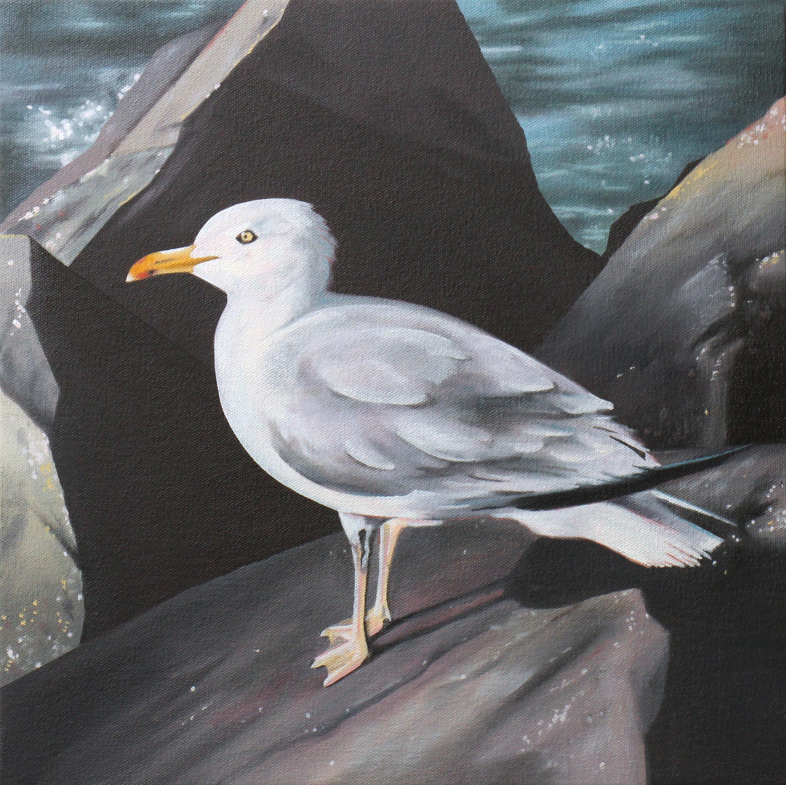 "Seagull, 2017. Oil on canvas 14"" x 14"""
