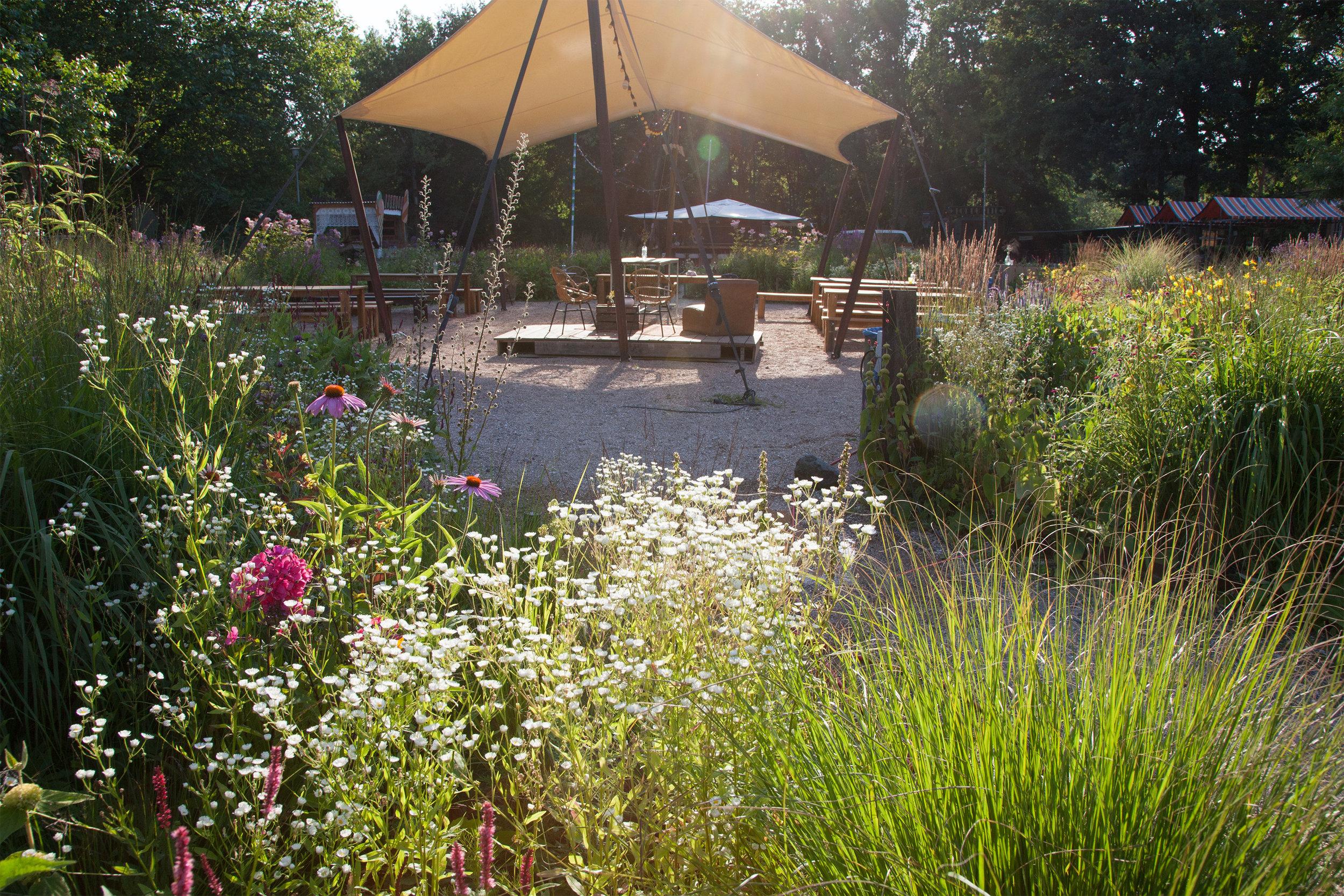 In opdracht van Karin Blom van Assendelft  Beplantingsplannen voor de openbare & semi-openbare ruimte Camping De Lievelinge in Vuren, 2018