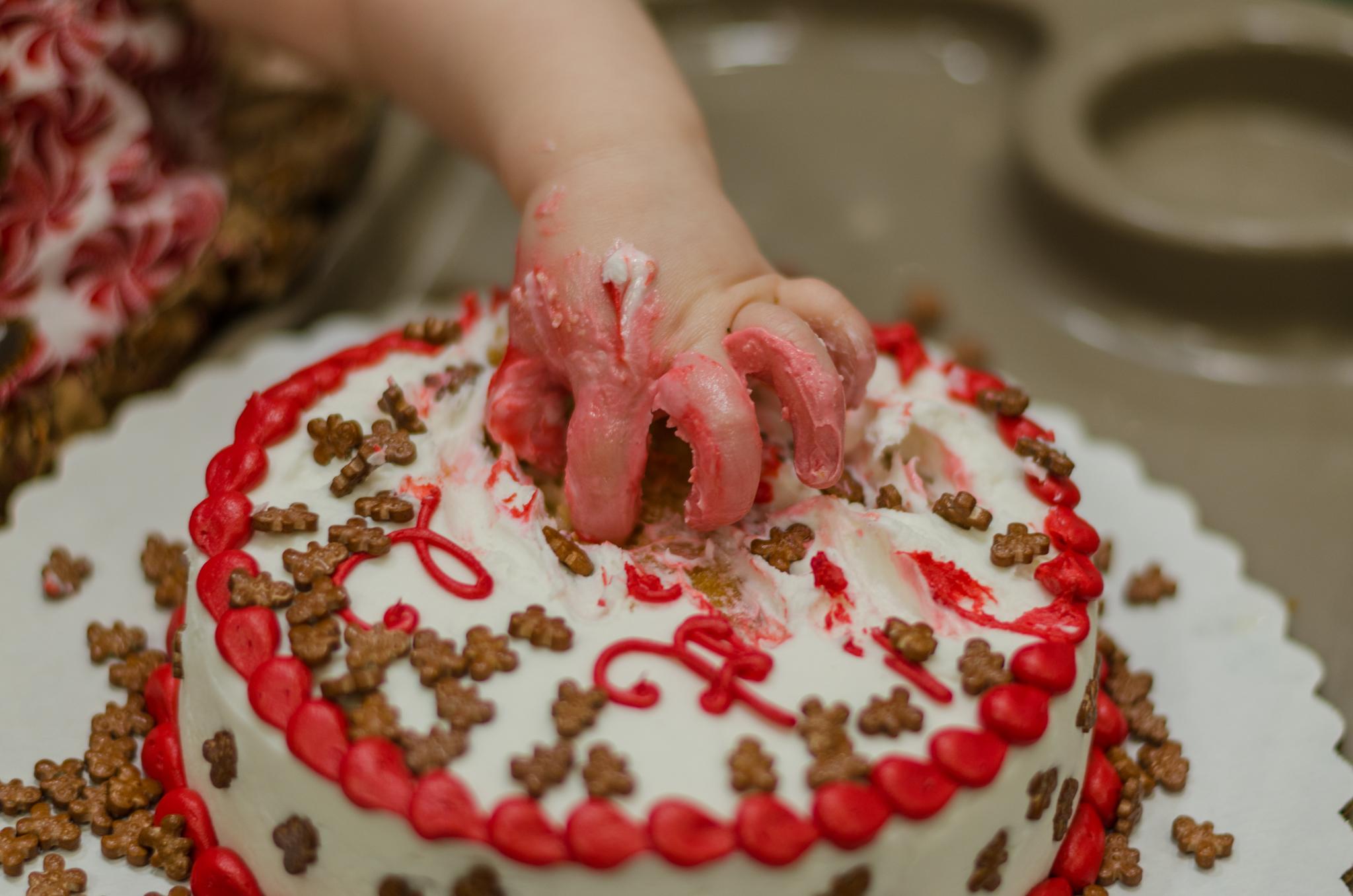 1st Birthday Party | Cake Smash | Harford County Maryland