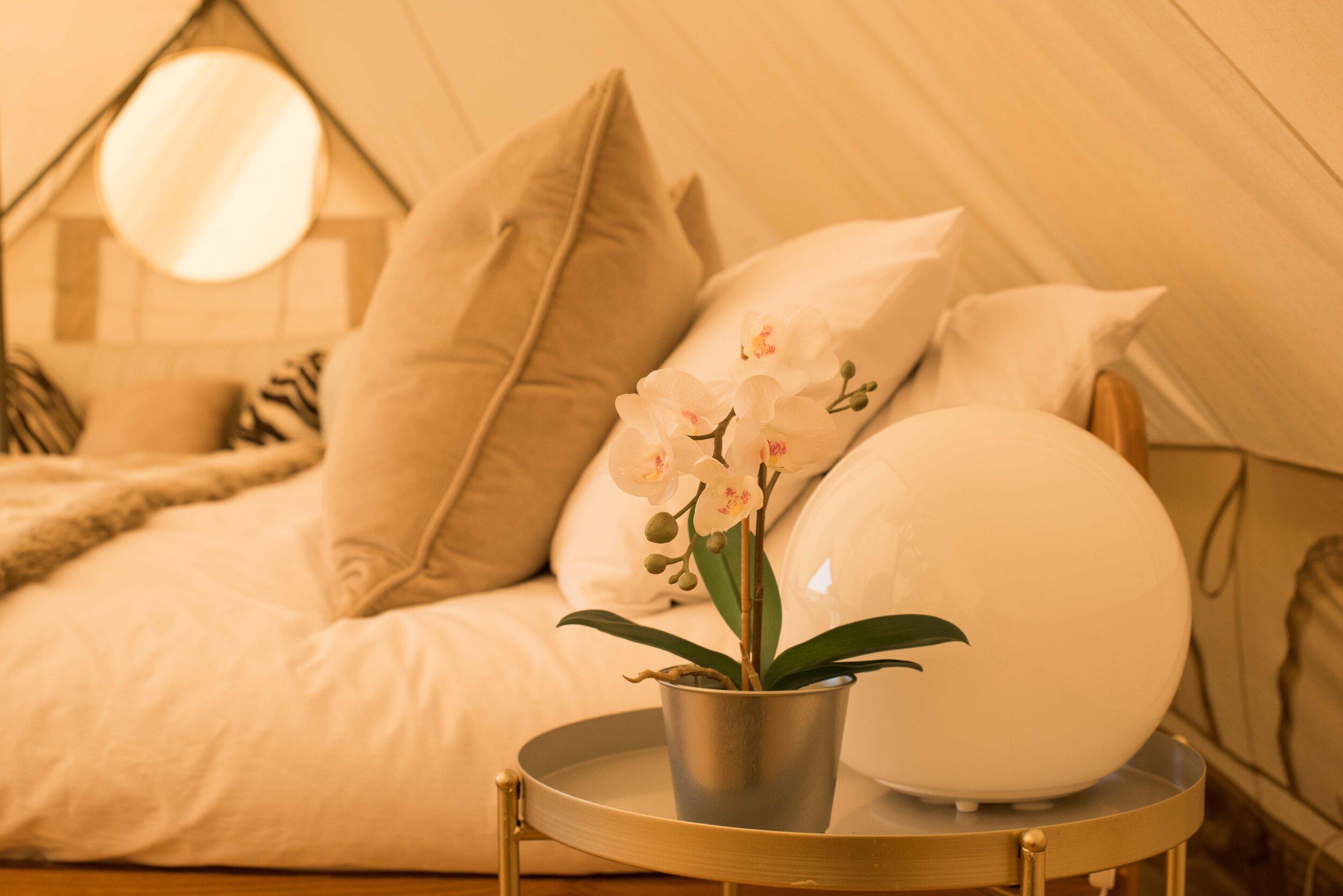 hotel_bell_tent-lf4.jpg