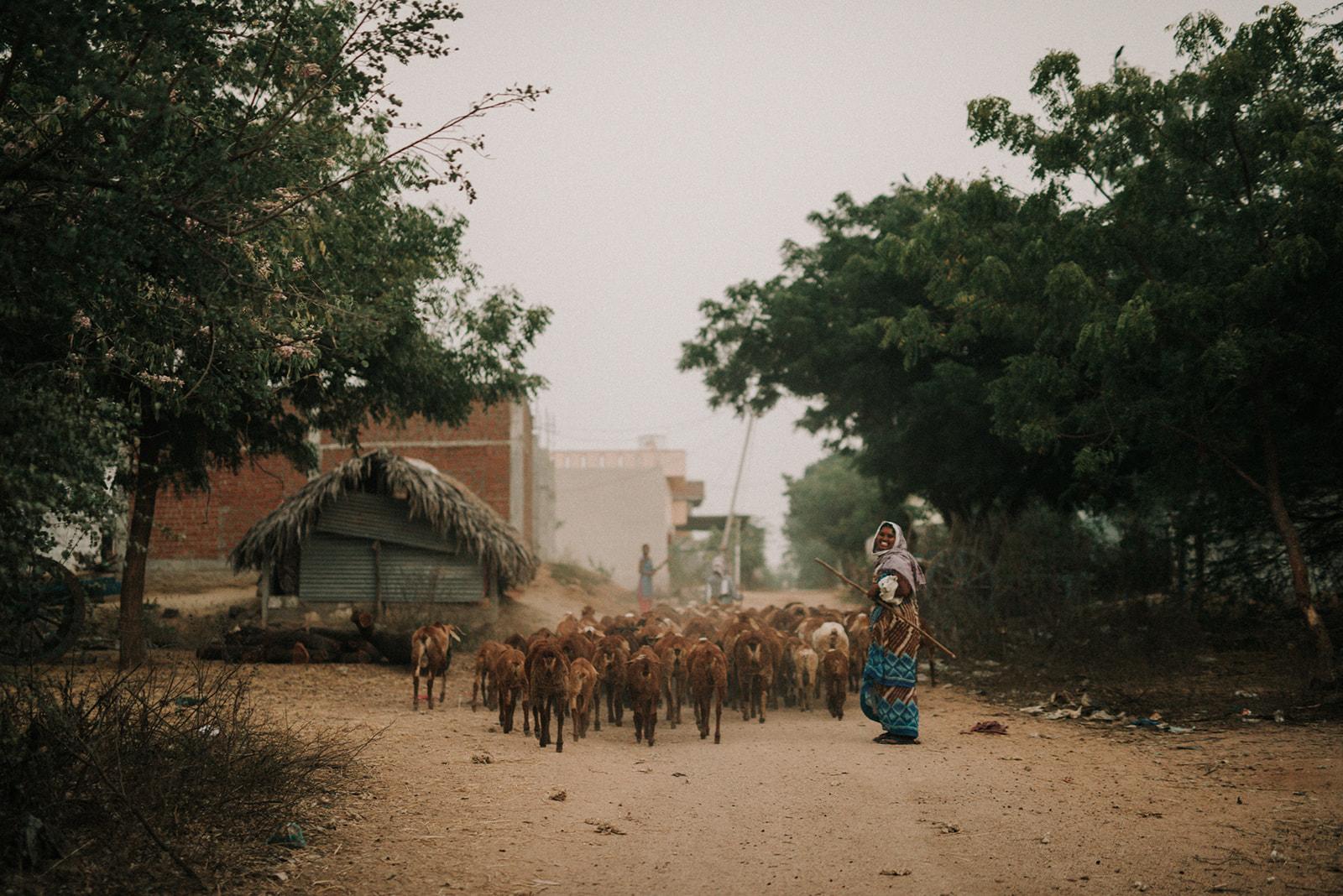 CCH_INDIA_HUMANITARIAN_NGO_TaraShupe_Photography_DSC_6343.jpg