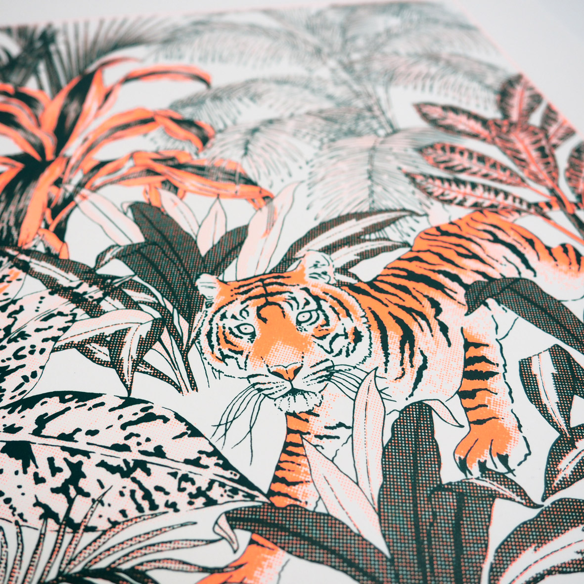 Sumatran-Tiger-Jungle-Screen-Print-5-sm.jpg