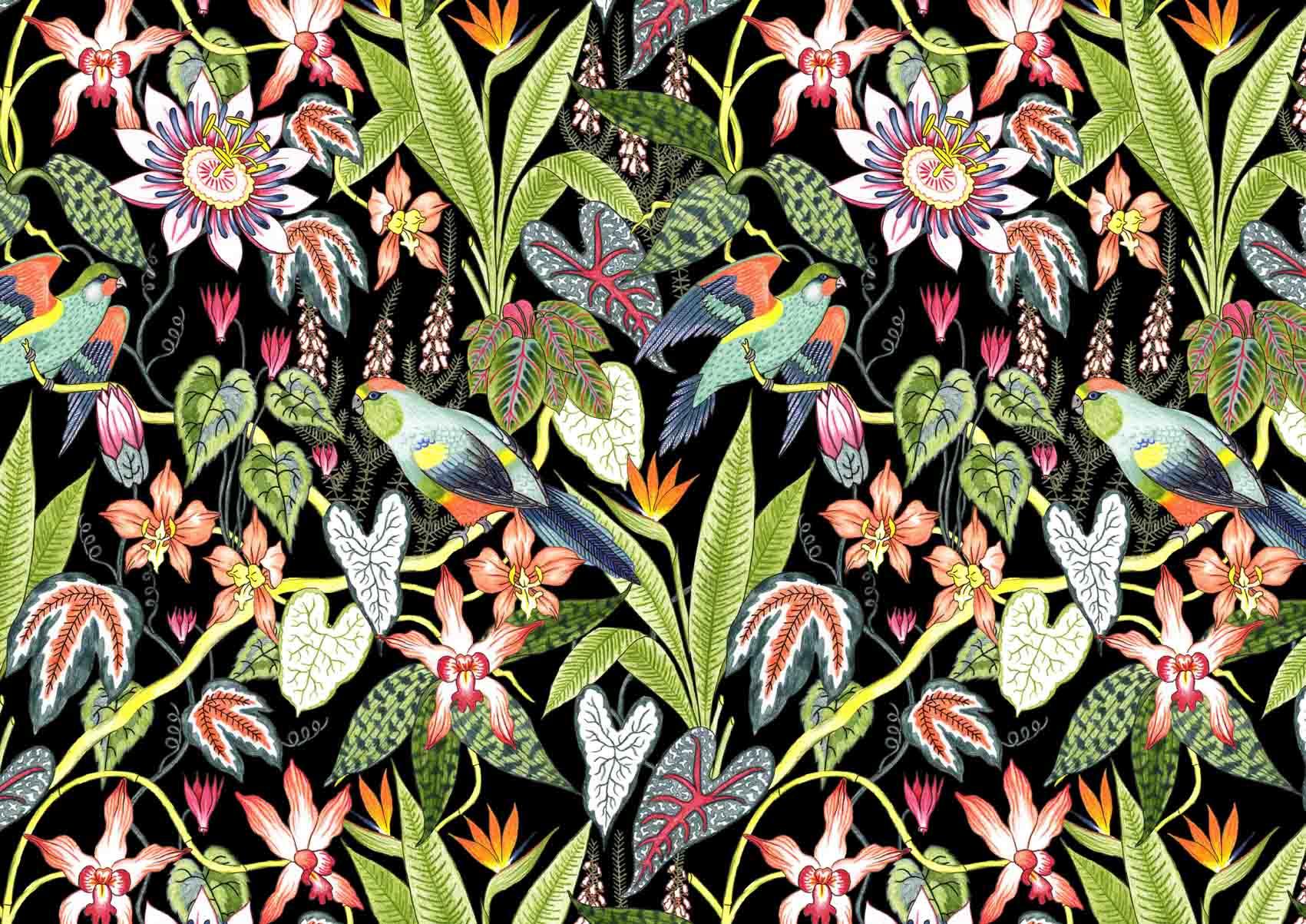 Derwent-Tropical-Pencil-set-Illustration-Pattern-Jacqueline-Colley-1.jpg